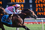 ARLINGTON HEIGHTS,IL-AUGUST 13: Mondialiste,ridden by Daniel Tudhope,wins the Arlington Million at Arlington International Race Track on August 13,2016 in Arlington Heights,Illinois (Photo by Kaz Ishida/Eclipse Sportswire/Getty Images)