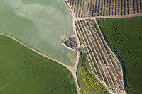 aerial view, farmland, Casarrubios del Monte, Spain