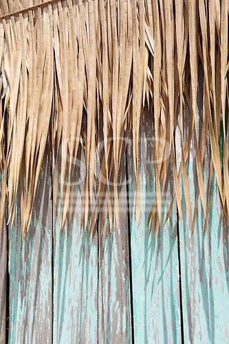 Xingu River, Para State, Brazil. The Volta Grande; Aldeia Terra Wangã da Volta Grande - Maia, Arara ethnic group.