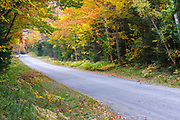 Zealand Road in the White Mountains of New Hampshire during the autumn months.
