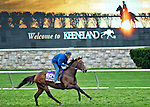 October 26, 2015 :  The Great War, trained by Wesley A. Ward and owned by Michael Tabor , Derrick Smith , Mrs. John Magnier & Joseph Allen, exercises in preparation for the Breeders' Cup Turf Sprint at Keeneland Race Track in Lexington, Kentucky on October 26, 2015. Scott Serio/ESW/CSM