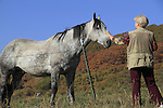 Older woman petting horse in autumn, southwest Colorado.