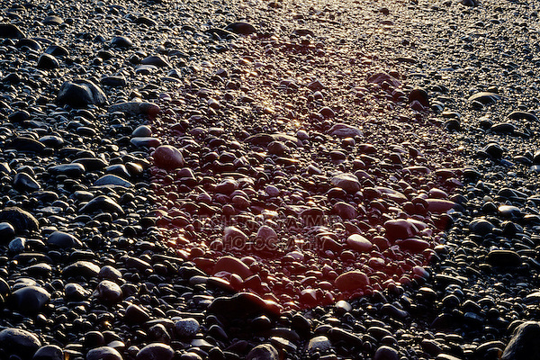 rocks at beach, Homer, Kachemak Bay, Kenai Peninsula Borough, Alaska, USA, March 2000