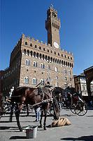 Palazzo Vecchio con carrozzella<br /> Palazzo Vecchio and horse cab<br /> Firenze 07-10-2016. Luoghi e Monumenti della citta'. <br /> Florence 7th October 2016. Places and monuments of the city.<br /> Foto Samantha Zucchi Insidefoto