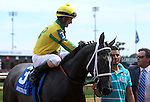 June 21, 2014:  Two year old filly Promise Me Silver and jockey Robby Albarado win the six furlong Debutante Stakes at Churchill Downs. The jockey shakes hands with the trainer Bret Calhoun.  Owner is Robert Luttrell. ©Mary M. Meek/ESW/CSM