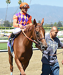 Parranda (no. 10), ridden by Elvis Trujillo and trained by Jerry Hollendorfer, wins the grade 2 Royal Heroine Stakes for fillies and mares three years old and upward on June 28, 2014 at Santa Anita Park in Arcadia, California. (Bob Mayberger/Eclipse Sportswire)