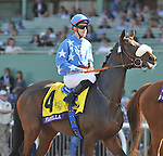 FLOTILLA, ridden by Christophe Lemaire and trained by Mikel Delzangles, before the Breeders' Cup Juvenile Fillies Turf at Santa Anita Park in Arcadia, California on November 2, 2012.
