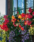 Oesterreich, Steyrisches Salzkammergut, Altaussee: Blumenschmuck an einem Wohnhaus | Austria, Styrian Salzkammergut, Altaussee: flower decoration