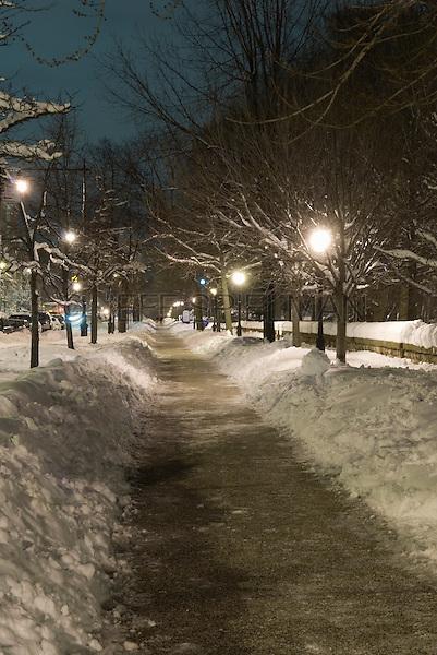 Sidewalk on Prospect Park West alongside Prospect Park after a Snow Storm, Park Slope, Brooklyn, New York City, New York State, USA