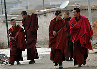 Monks at the Youning Temple near Xining, Qinghai Province 13 November 2008. Qinghai Province in western China borders Tibet and parts were the scenes of disturbance earlier this year, 2008.<br /> <br /> Photo by Richard Jones