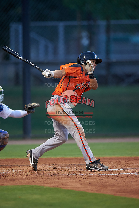 AZL Giants Orange Omar Medina (6) at bat during an Arizona League game against the AZL Dodgers Mota on June 29, 2019 at Camelback Ranch in Glendale, Arizona. The AZL Giants Orange defeated the AZL Dodgers Mota 9-3. (Zachary Lucy/Four Seam Images)