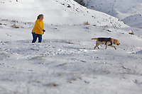 WEATHER PICTURE WALES<br /> Pictured: A woman walks her dog next to the snow covered A4069 in the Black Mountains near Brynamman, Wales, UK. Wednesday 23 January 2019