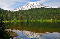 Mount Rainier and evergreen forest are mirrored in Reflection Lake, Mt Rainier National Park, Washington State.