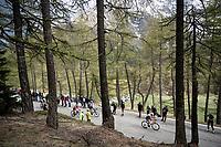 Manuel Senni (ITA/Bardiani - CSF) up the Colle San Carlo (Cat1/1921m/10.1km/9.8%)<br /> <br /> Stage 14: Saint Vincent to Courmayeur/Skyway Monte Bianco (131km)<br /> 102nd Giro d'Italia 2019<br /> <br /> ©kramon