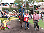 August 15, 2010.Wasted Tears, riden by Rajiv Maragh, in the Paddock before the John C. Mabee Stakes, at Del Mar Thoroghbred Club, Del Mar, CA
