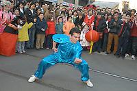 - celebration of the Chinese New Year's Day in Milan....- celebrazione del capodanno cinese a Milano