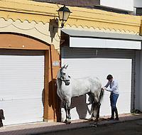 Die Pferde der Bruderschaft Paso Azul werden für die Prozession der Semana Santa (Karwoche) vorbereitet,, Lorca,  Provinz Murcia, Spanien, Europa
