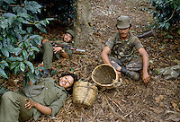 - young people of the student sandinista militia assigned to the coffee harvest and the defense of the plantations from the counter-revolutionary guerrilla in a farm  north of Jinotega ....- giovani della milizia sandinista studentesca addetti alla raccolta del caffè e alla difesa delle piantagioni dalla guerriglia controrivoluzionaria in una fattoria a nord di Jinotega