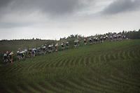 peloton going up<br /> <br /> stage 3: Buchten - Buchten (NLD/210km)<br /> 30th Ster ZLM Toer 2016