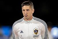 GK David Bingham #1 of the Los Angeles Galaxy