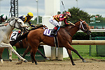 June 22, 2019 : Mia Mischief (#10, Ricardo Santana Jr.) wins the Roxelana Stakes at Churchill Downs, Louisville, Kentucky. Trainer Steven M. Asmussen, Owners L. William and Corinne Heiligbrot, Heider Family Stables LLC (Scott Heider), and Madaket Stables LLC (Sol Kumin and Jason Monteleone). By Into Mischief x Greer Lynn, by Speightstown. Mary M. Meek/ESW/CSM