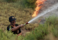 Pictured: A fireman battles the flames.<br /> Re: A forest fire has been raging in the area of Kalamos, 20 miles east of Athens in Greece. There have been power cuts, country houses burned and children camps evacuated from the area.