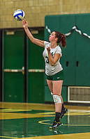 1 November 2015: SUNY College at Old Westbury Panther Outside Hitter Brianne Dorney, a Junior from Merrick, NY, in action against the Yeshiva University Maccabees at SUNY Old Westbury in Old Westbury, NY. The Panthers edged out the Maccabees 3-2 in NCAA women's volleyball, Skyline Conference play. Mandatory Credit: Ed Wolfstein Photo *** RAW (NEF) Image File Available ***