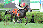 Silver Max (no. 7), ridden by Robby Albarado and trained by Dale Romans, wins the 55th running of the grade 2 Bernard Baruch Handicap for three year olds and upward on August 31, 2013 at Saratoga Race Course in Saratoga Springs, New York.  (Bob Mayberger/ Eclipse Sportswire)