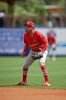 Palm Beach Cardinals second baseman Rayder Ascanio (3) during a Florida State League game against the Charlotte Stone Crabs on April 14, 2019 at Charlotte Sports Park in Port Charlotte, Florida.  Palm Beach defeated Charlotte 5-3.  (Mike Janes/Four Seam Images)