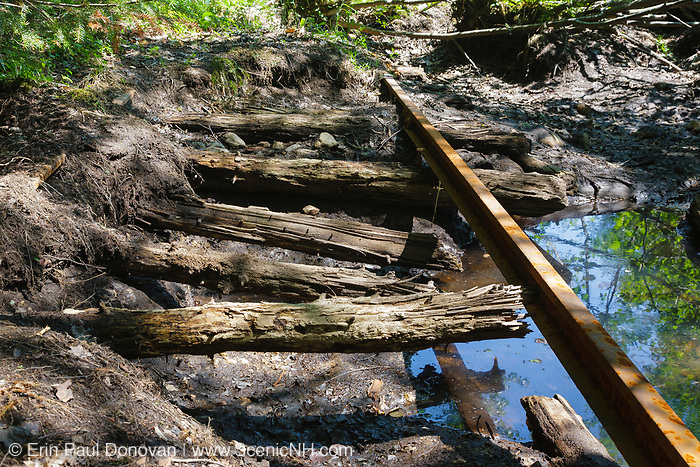 Abandoned railroad track deep in the Pemigewasset Wilderness in Lincoln, New Hampshire. This was a spur line located off of the North Fork Branch of the East Branch & Lincoln Railroad (1893-1948).