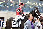 January 16, 2016: Chocolate Ride with Florent Geroux up heads to the starting gates for the Col. E.R. Bradley Handicap race at the Fairgrounds race course  in New Orleans Louisiana. Steve Dalmado/ESW/CSM