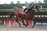 Too Fast To Pass with Eduardo Nunez up wins 2yo Maiden Allowance at Calder Race Course, Miami Gardens Florida. 07-28-2012.  Arron Haggart/Eclipse Sportswire.