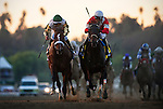 FORT LARNED, ridden by Brian Hernandez Jr. and trained by Ian Wilkes (right) defeats Mucho Macho Man and Mike Smith to win the Breeders' Cup Classic at Santa Anita Park in Arcadia, California on November 3, 2012.