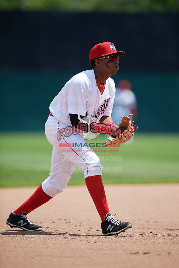 Auburn Doubledays third baseman Omar Meregildo (18) during the first game of a doubleheader against the Mahoning Valley Scrappers on July 2, 2017 at Falcon Park in Auburn, New York.  Mahoning Valley defeated Auburn 3-0.  (Mike Janes/Four Seam Images)