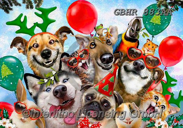 Howard, CHRISTMAS ANIMALS, WEIHNACHTEN TIERE, NAVIDAD ANIMALES, paintings+++++,GBHR883AA,#xa# ,Selfies
