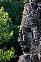 A vine grows on a  face tower of The Bayon at Angkor Thom, the largest Khmer city ever built by Jayavarman 7 & 8, are part of the Angkor Wat complex  -  Siem Reap, Cambodia.....