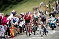 Nicolas Roche (IRE/Sunweb) & Matteo Trentin (ITA/Mitchelton-Scott) up the Horquette d'Ancizan<br /> <br /> Stage 12: Toulouse to Bagnères-de-Bigorre(209km)<br /> 106th Tour de France 2019 (2.UWT)<br /> <br /> ©kramon
