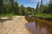 This is the location of where a log bridge along the East Branch & Lincoln Railroad (1893-1948) crossed Shoal Pond Brook in the Stillwater area of the Pemigewasset Wilderness in the New Hampshire White Mountains. This section of the railroad is located along the Upper East Branch of the railroad.