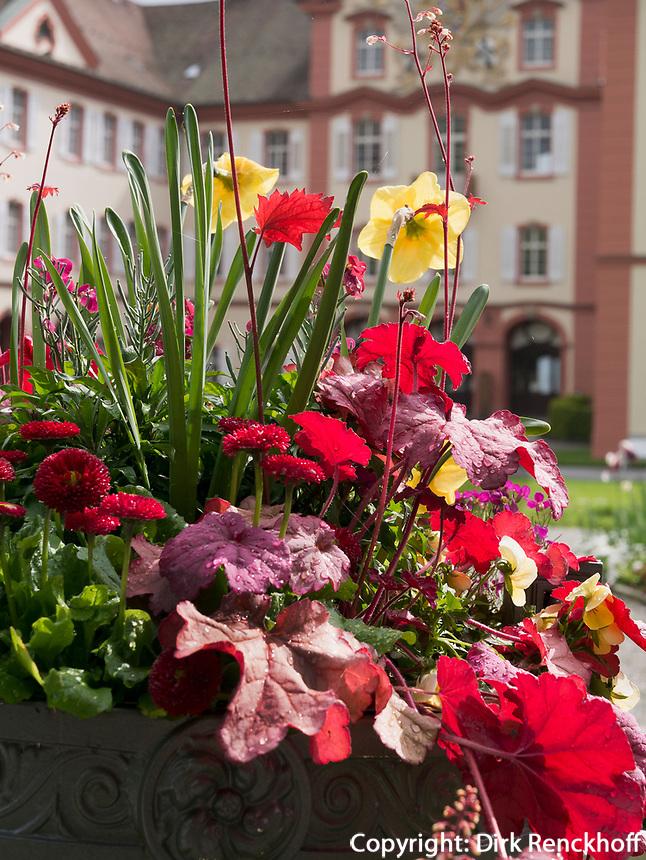 Schloss, Bodensee - Insel Mainau, Baden-Württemberg, Deutschland, Europa<br /> Castle on Isle of Mainau, Lake Constance, Baden-Württemberg, Germany, Europe