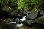 Creek flowing through tropical rainforest, Cocobolo Nature Reserve, Mamoni Valley, Panama
