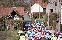 up<br /> <br /> 73rd Kuurne - Brussels - Kuurne 2021<br /> ME (1.Pro)<br /> 1 day race from Kuurne to Kuurne (BEL/197km)<br /> <br /> ©kramon