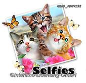 Howard, SELFIES, paintings+++++,GBHRPROV152,#Selfies#, EVERYDAY