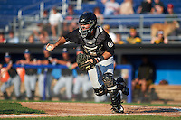 West Virginia Black Bears catcher Daniel Arribas (23) chases a runner back to third during a game against the Batavia Muckdogs on August 30, 2015 at Dwyer Stadium in Batavia, New York.  Batavia defeated West Virginia 8-5.  (Mike Janes/Four Seam Images)