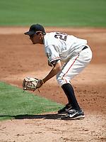 CJ Ziegler / AZL Giants..Photo by:  Bill Mitchell/Four Seam Images
