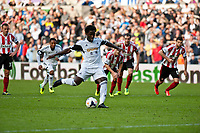 Saturday 19 October 2013 Pictured: Wilfried Bony takes a penalty kick <br /> Re: Barclays Premier League Swansea City vSunderland at the Liberty Stadium, Swansea, Wales