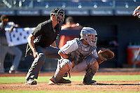 Umpire Shane Livensparger and Surprise Saguaros catcher Jose Trevino (13), of the Texas Rangers organization, during a game against the Peoria Javelinas on October 12, 2016 at Peoria Stadium in Peoria, Arizona.  The game ended in a 7-7 tie after eleven innings.  (Mike Janes/Four Seam Images)