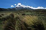 Amérique du Sud. Equateur. Trekking sur les volcans d'Equateur.  du Chimborazo (plus haut sommet de l'Equateur à 56310 m).South America. Ecuador. Trekking on the volcanoes
