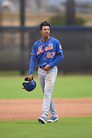 New York Mets Mark Vientos (87) during a Minor League Spring Training game against the Houston Astros on April 27, 2021 at FITTEAM Ballpark of the Palm Beaches in Palm Beach, Fla.  (Mike Janes/Four Seam Images)