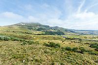 France, Puy de Dome, Volcans d'Auvergne Regional Natural Park, Chambon sur Lac, landscape between Chambon sur Lac and Mont Dore // France, Puy-de-Dôme (63), Parc naturel régional des volcans d'Auvergne, Chambon-sur-Lac, paysage entre Chambon-sur-Lac et Mont-Dore