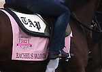 LOUISVILLE, KY - APRIL 27: Kentucky Oaks saddlecloth of Rachel's Valentina (Bernardini x Rachel Alexandra, by Medaglia d'Oro) as she walks to the track with her exercise rider Amy Mullen at Churchill Downs, Louisville KY, in preparation for the Kentucky Oaks.Owner Stonestreet Stables LLC, trainer Todd A. Pletcher.  (Photo by Mary M. Meek/Eclipse Sportswire/Getty Images)